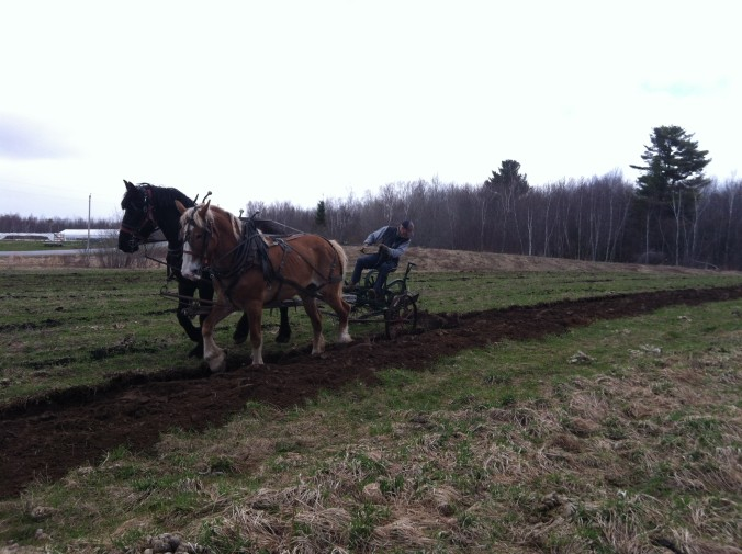 Hoewspowered Organic Farm Maine